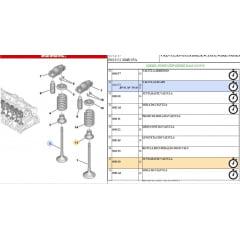 095650 - Kit Com 8 Retentor Valvula Peugeot Expert Jumpy Original